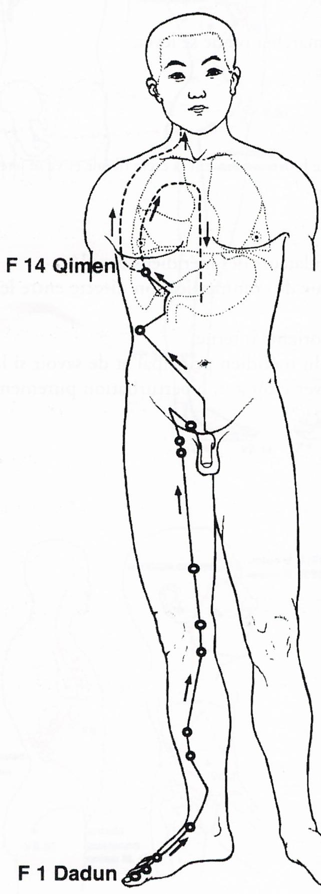 traitement abcès au foie